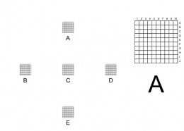 Correlative Microscopy Coverslips, 10x10 grids of 0.1mm squares at 5 positions,pack 25