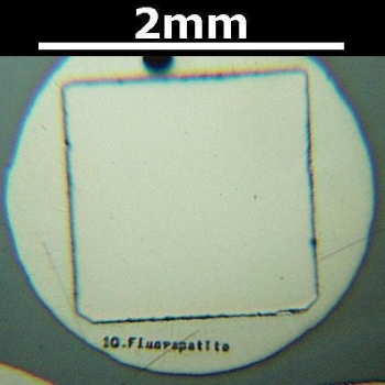 SPI Supplies Individual Mounted Microanalysis Standard Item, Minerals Group, Apatite