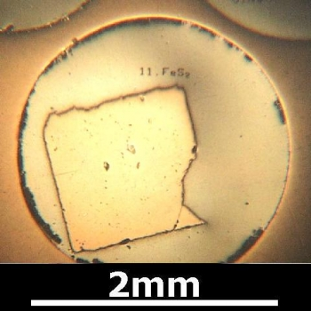 SPI Supplies Brand Standards For Microanalysis, Minerals CMTaylor Collection Pyrite, Mounted
