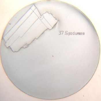 SPI Supplies Brand Standards for Microanalysis CMTaylor, Natural Mineral, Spodumene Mounted