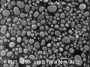 SPI Supplies Brand Gold-on-Carbon SEM Resolution Test Specimen, Medium only on 1510 Mount