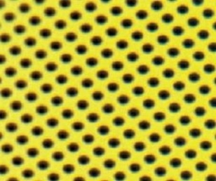 Quantifoil® UltrAuFoil® R 2/2 Holey Gold Films on 200 Mesh Au Grids, Pack 50