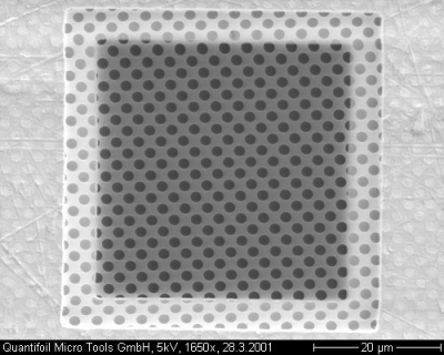 SEM Evaluation Sample Quantifoil R1.2/1.3 Holey Carbon Film on 300 Mesh Cu grid,Pk of 1